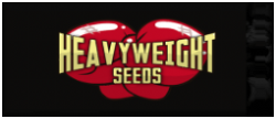 Heavyweight Seeds - Official Retailer - Just Feminized Cannabis Seeds Bank - 2018
